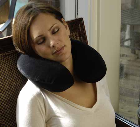 ALEX ORTHOPEDIC Memory Foam Traveling Pillow at Sears.com