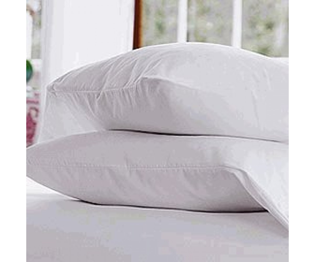 Pacific Coast Double Down Around Standard Pillow Complete Set (4 Standard Pillows)