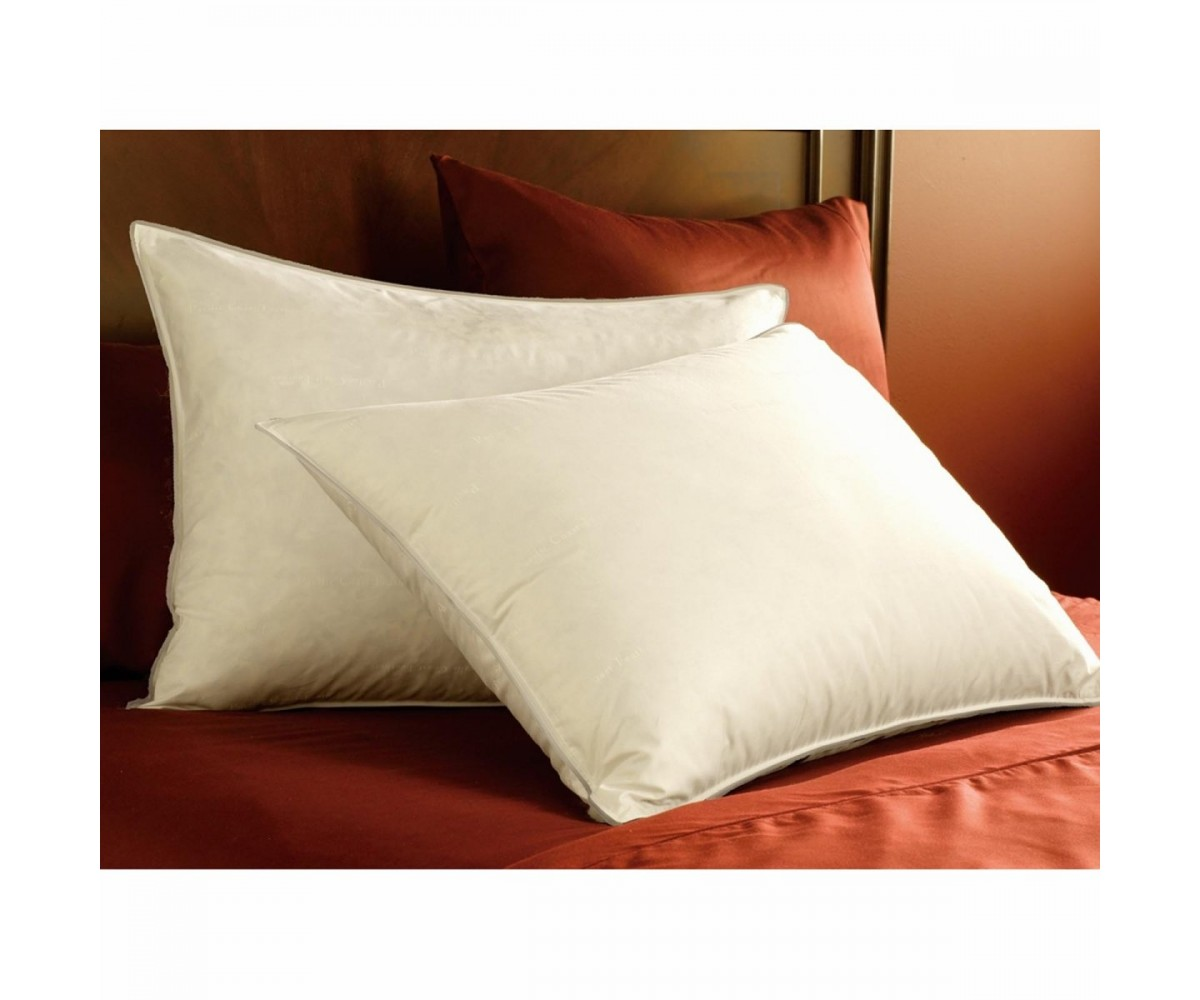 Ritz-Carlton Pacific Coast Double Down Surround Pillow Set (2 Standard Pillows)
