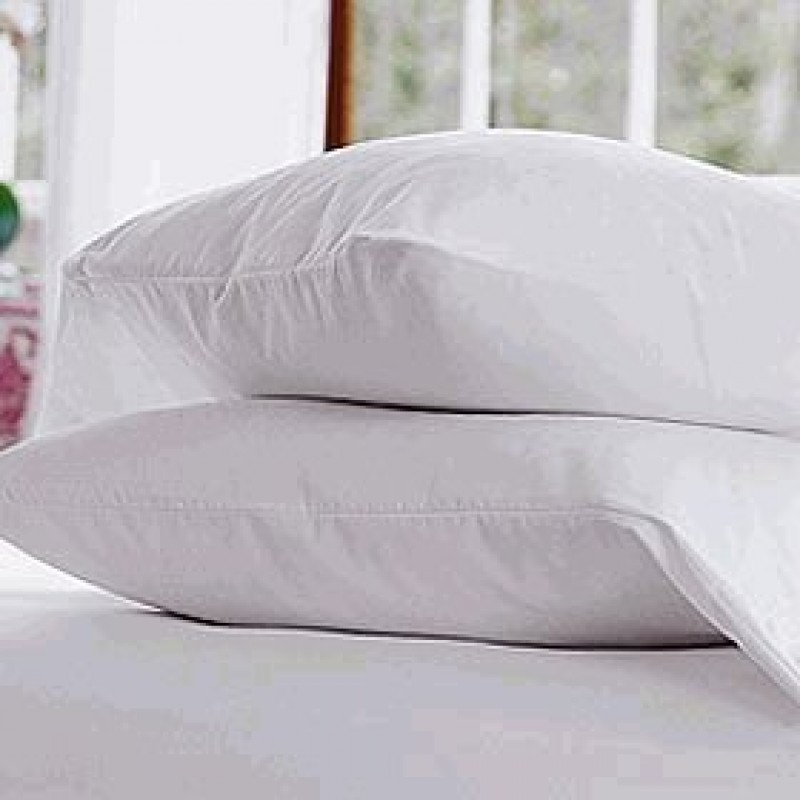 pacific coast down chamber pillow 20 x 30 queen size