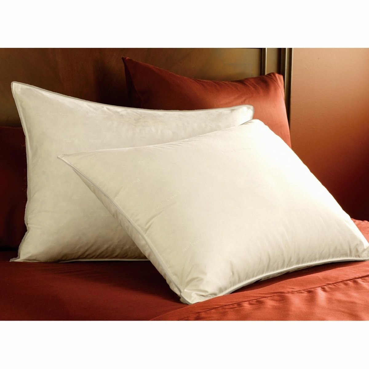 medium power pillows fill dp count coast pacific down thread feathers king pillow home double amazon com pack resilia downaround kitchen