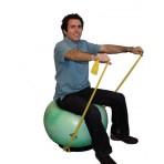 Dynamic Stabilizer Ball Base