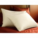 Pacific Coast Feather Double Down Around Pillow - Standard