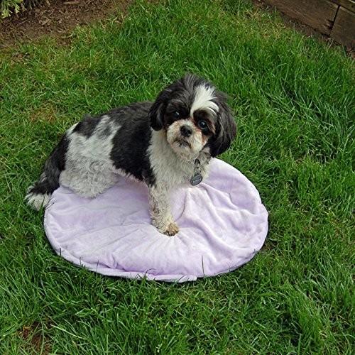 Aromatherapy Pillow Pet : Pet Bed